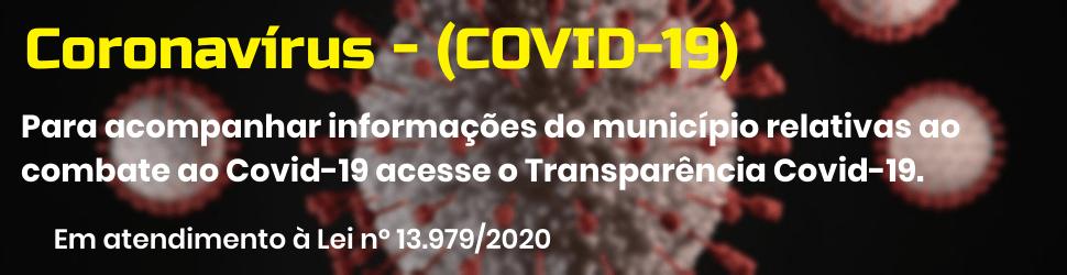 Informações Coronavírus